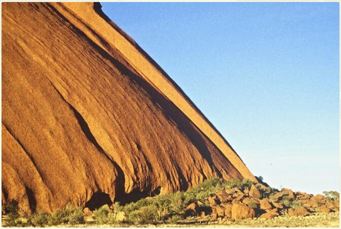 Australia - Different Animals and Nature 3