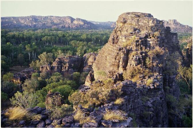 Australia - Different Animals and Nature