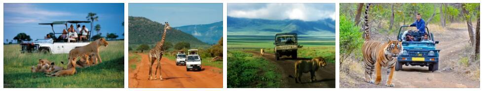 Safari and Nature Trips in Asia